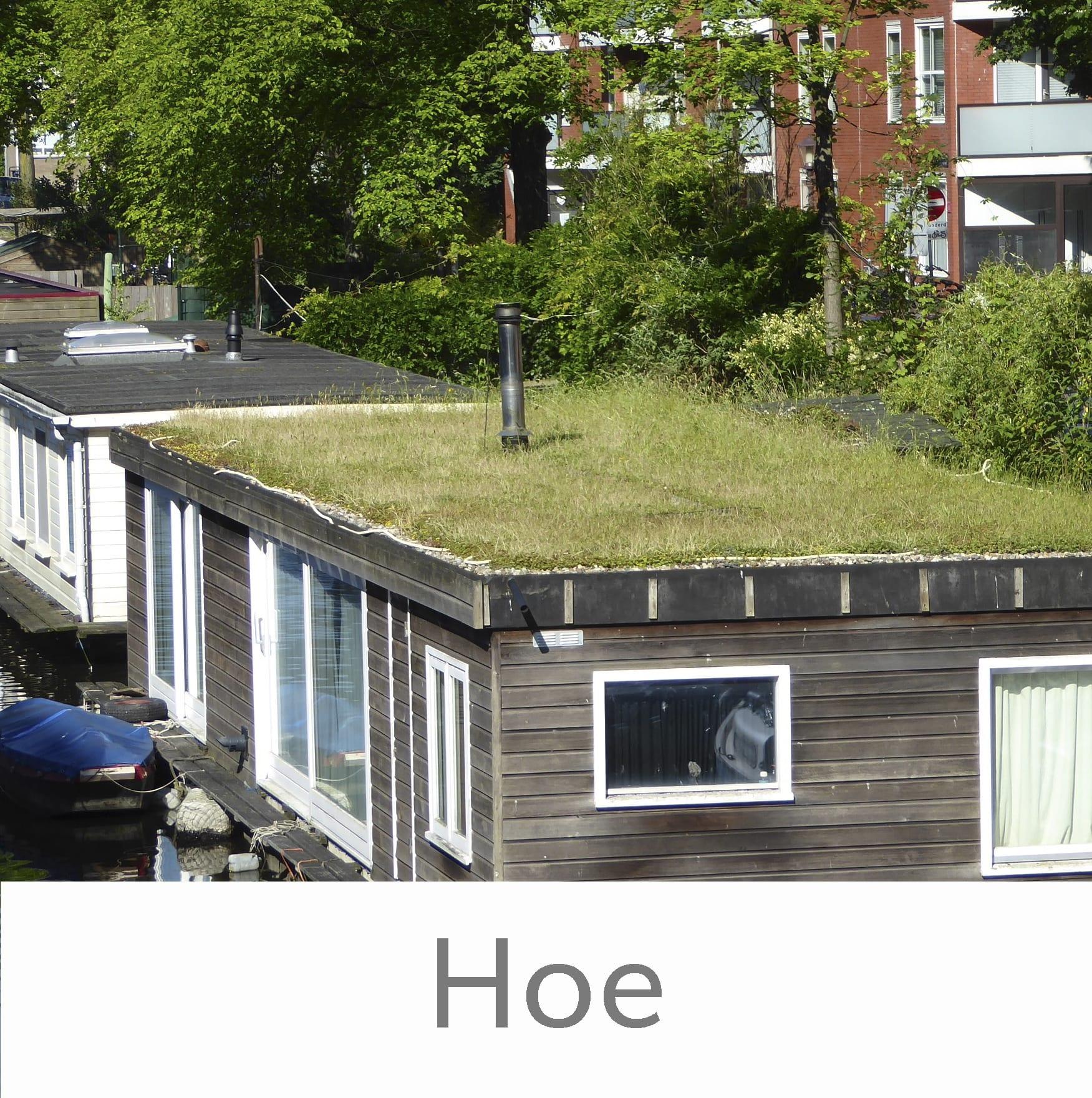 Groene daken waarom en hoe